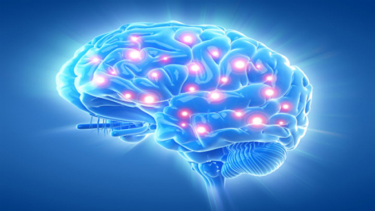 Researchers Say They've Found a Better Way to Measure Consciousness